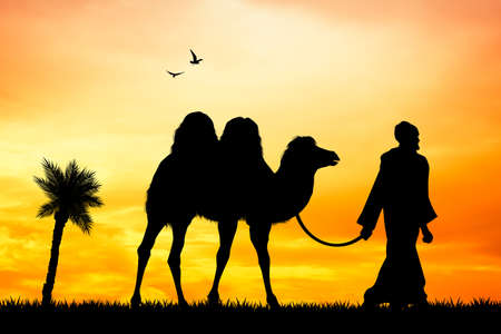 herdsman: camel in the desert Stock Photo