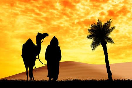 bedouin: bedouin with camel in the desert