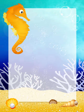 seahorse with frame photo