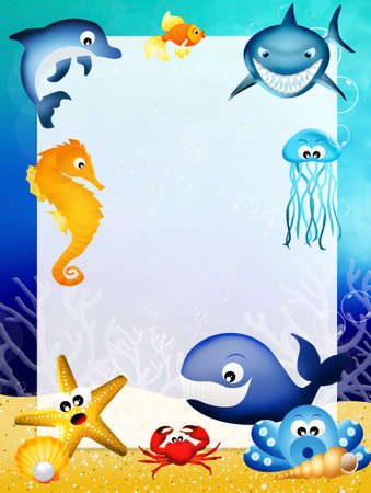 marine animals frame photo