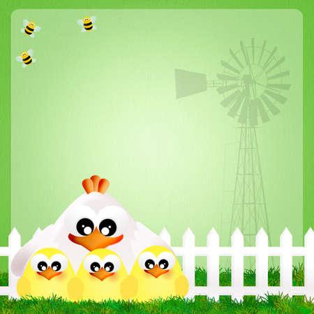 illustration of hen and chicks illustration