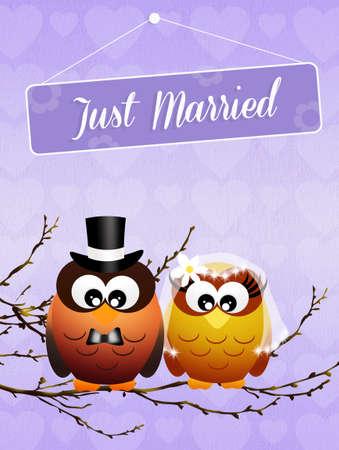Wedding of owls photo