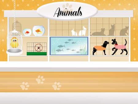store of animals photo