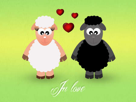 sheeps in love photo