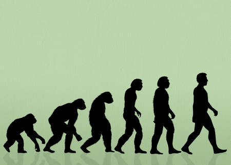 evolucion: Evoluci�n