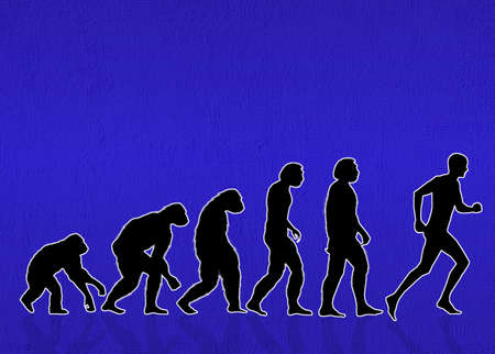Human evolution photo