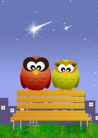 shooting star flower: Owls on bench