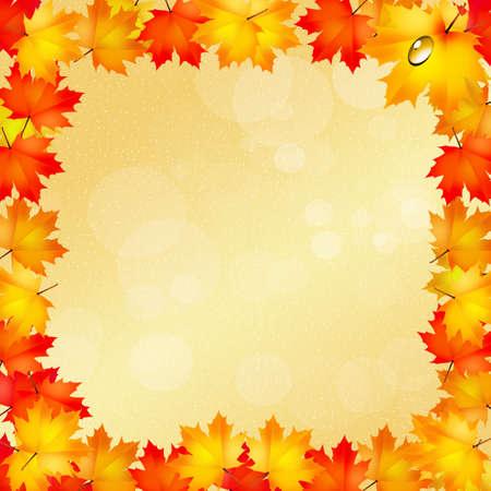 autumn frame photo