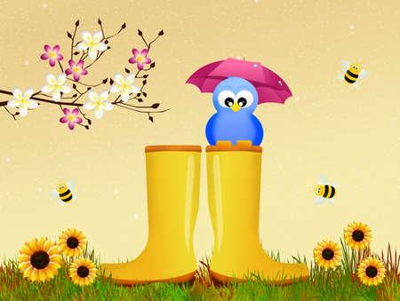 rain boots: bird on rain boots