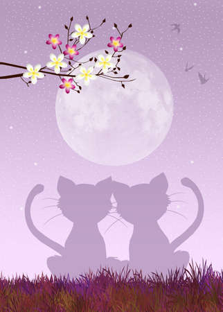 Cats in love photo