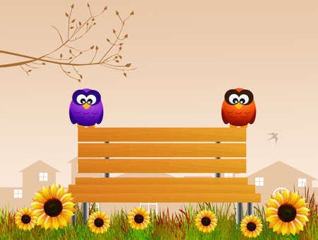 owls on bench photo