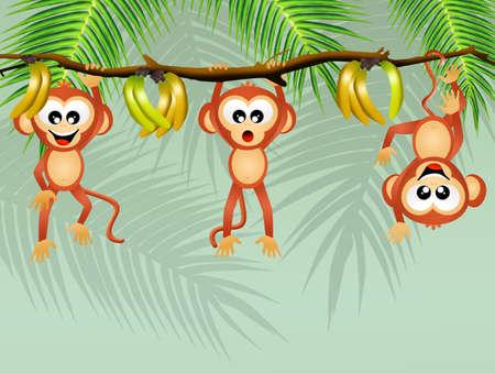 liana: monkeys on liana