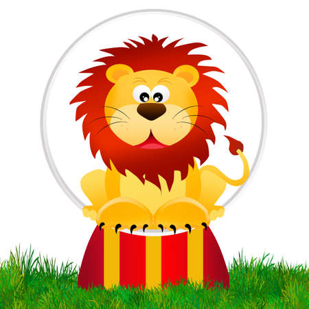 Lion in the circo photo