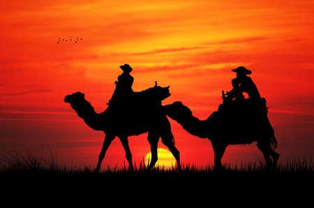 excursion: camel excursion