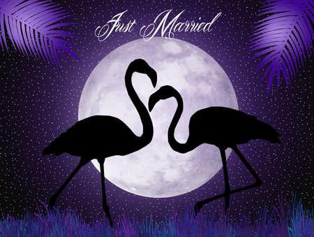 flamingos: pink flamingos silhouette