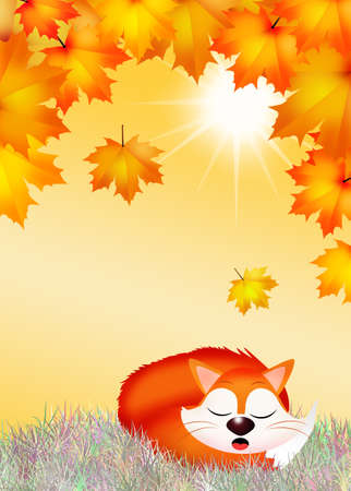 artful: red fox cartoon