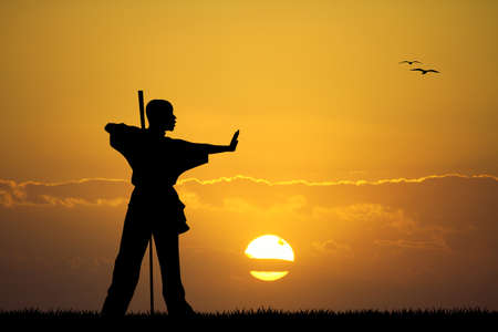 kung fu at sunset photo