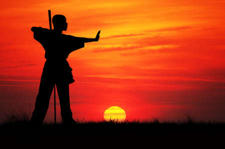 Kung fu silhouette at sunset photo