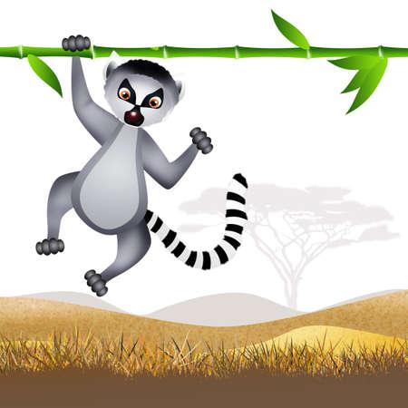 lemur: Lemur cartoon