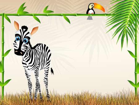 zebra cartoon photo