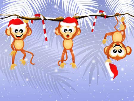 liana: monkeys on liana at Christmas