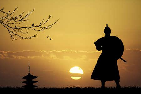 longsword: Samurai