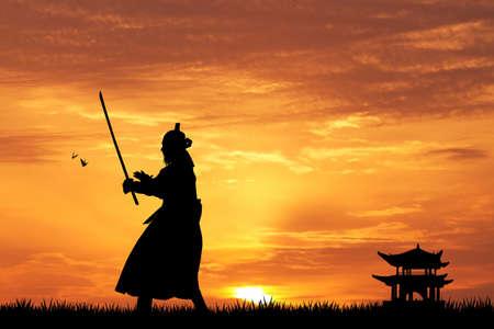 Samurai  Standard-Bild - 31172271