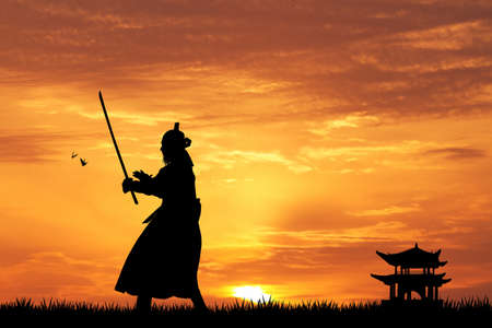 Samurai Stok Fotoğraf - 31172271