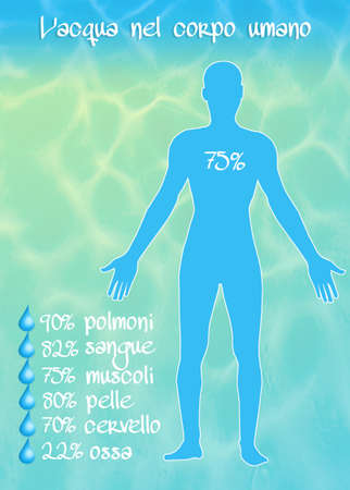 human body: the water in the human body Stock Photo