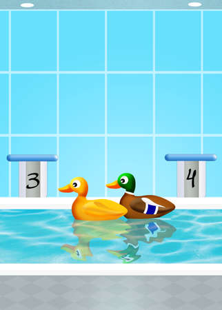 Ducks in the pool photo
