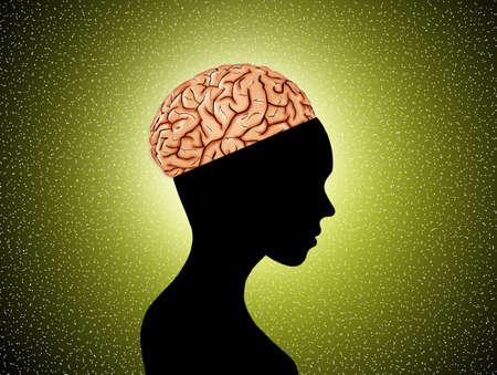 frontal lobe: frontal lobe