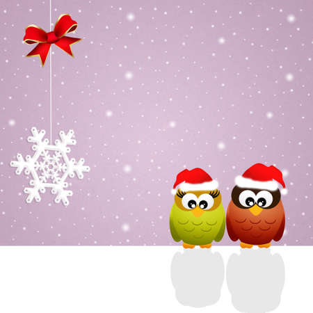 Owls at Christmas photo