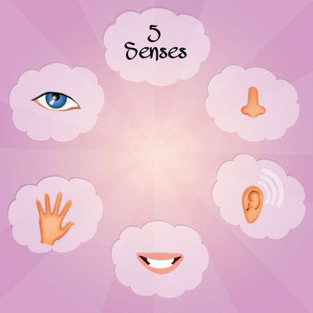 Five Senses photo