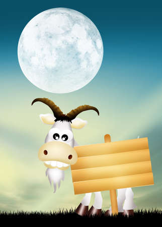 year of the goat Stock Photo