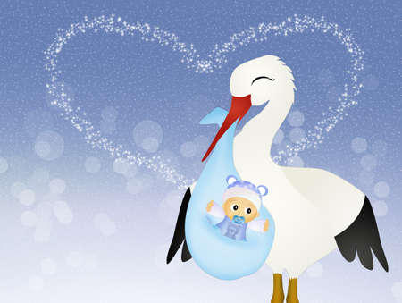 stork with baby photo