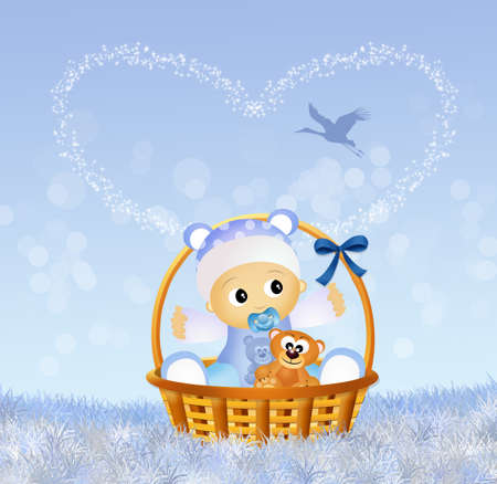 baby in the basket photo