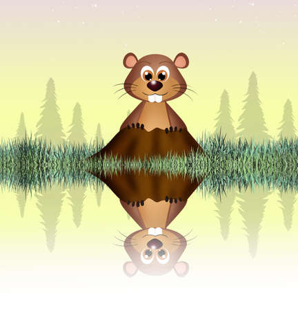 groundhog: groundhog Stock Photo