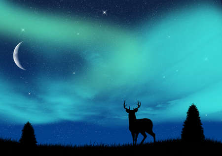 aurora borealis: Aurora borealis