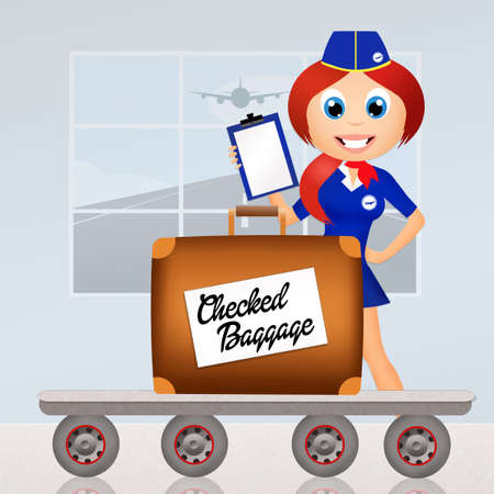 checked: checked baggage
