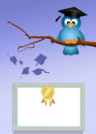 scholastic: bird graduate