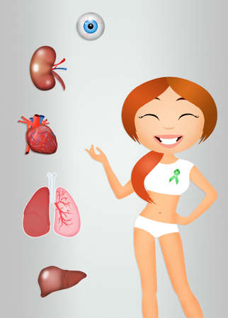 donacion de organos: la donación de órganos