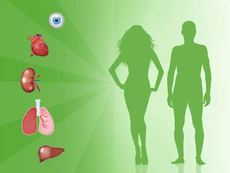 장기 기증 스톡 콘텐츠