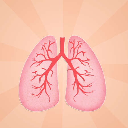 illustration of lungs illustration