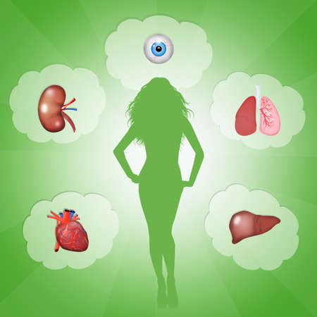 donacion de organos: La donaci�n de �rganos