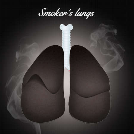smokers lungs photo