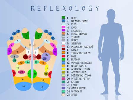 frontal sinuses: Reflexology Stock Photo