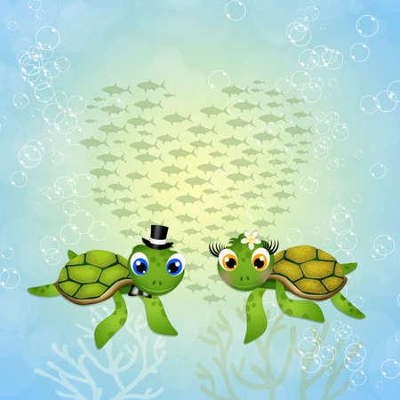turtles love: funny sea turtles in love