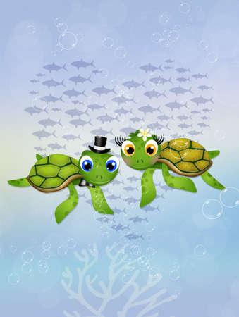 turtles love: sea turtles in in the ocean