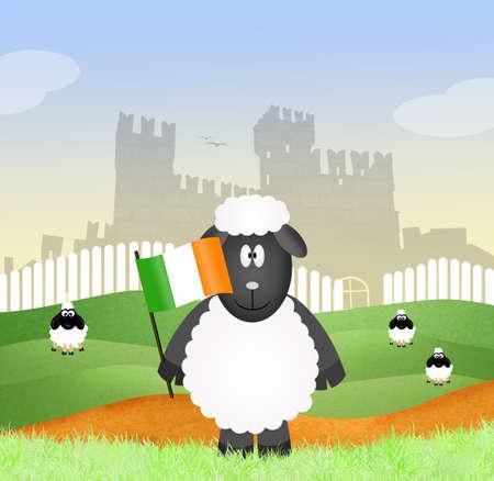 irish landscape: sheep with Irish flag
