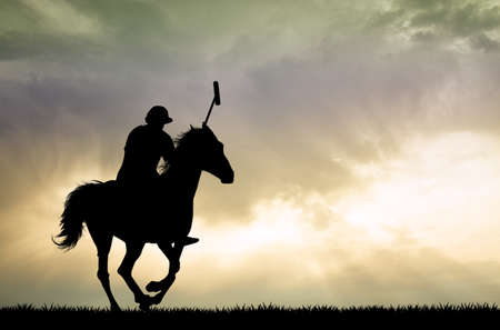 horses in field: polo players on horses Stock Photo